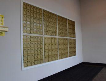 mail box rental