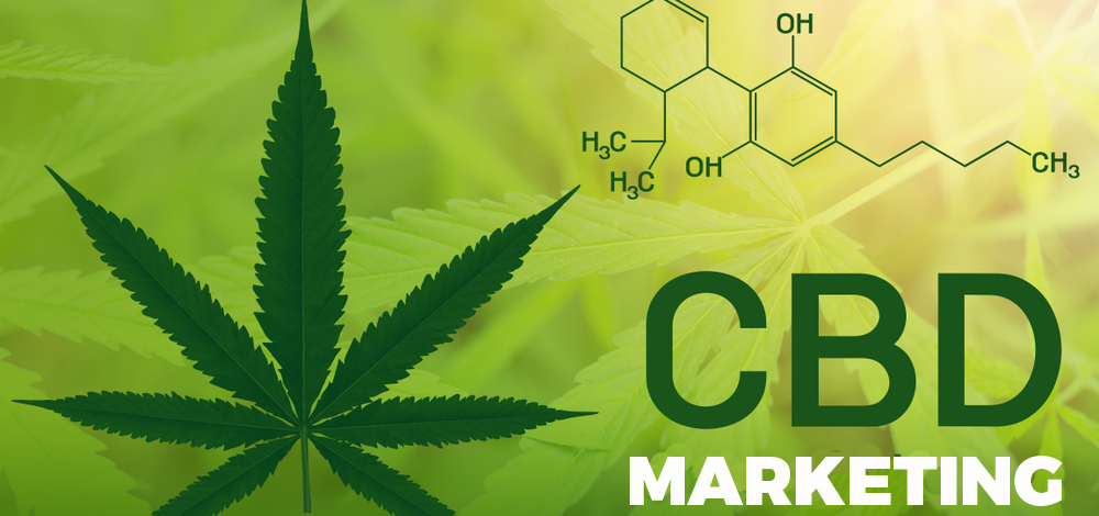 Facts You Should Know About Starting A CBD Business Online